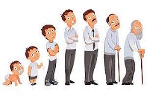 طرح ریزی شغلی و حرفه ای با توجه به مراحل زندگی شغلی افراد